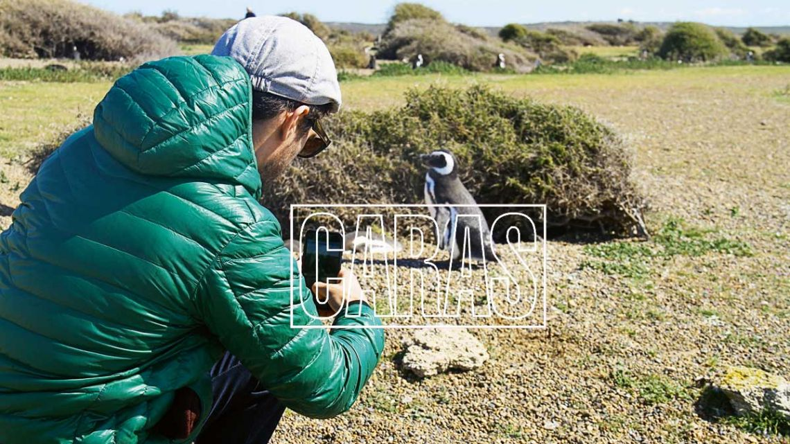 Michel Noher visitó los pingüinos y las ballenas francas en el sur argentino