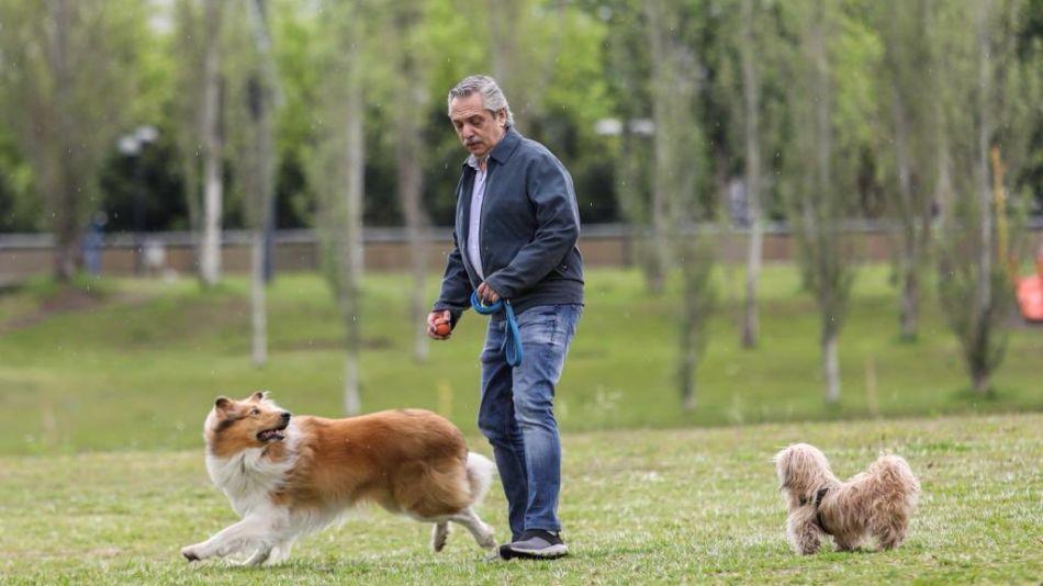 Alberto Fernández-Elecciones 2019