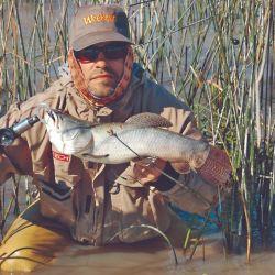 El autor muestra un ejemplar pescado entre los juncos.