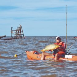 Logramos grandes carpas en kayak fishing en La Pajarera de Quilmes.