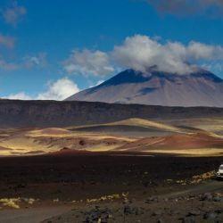 En La Payunia van a encontrar más de 800 conos volcánicos.
