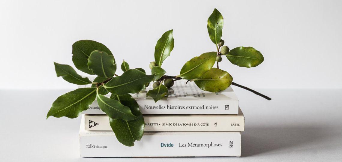 ¿Cómo llevar un estilo de vida más minimalista?