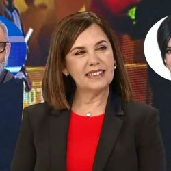 Parodi se expresó sobre la renuncia de Mónica