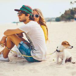 Una tendencia que ha ganado impulso en los últimos años es la de viajar con las mascotas.