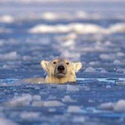 Globalmente, el nivel del mar ha aumentado desde 1850 a un ritmo mayor que durante los 2.000 años anteriores.