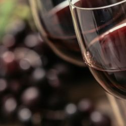 El catar un vino no es solo degustarlo, más bien se trata de un ritual que cada botella merece, ya que esperó el tiempo necesario para entregarse y así dar todo lo bueno que tiene el vino para dar, como si fuera un secreto guardado que nadie sabe.