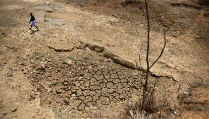 La sequía afectó a numerosas zonas de Asia y el Pacífico en 2019 y las condiciones de sequía prolongada siguieron en el este de Australia desde 2017 y 2018 y se intensificaron en 2019.