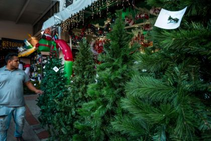 In the middle of an economic crisis, Venezuelans still try to keep their holiday spirit alive by decorating their homes with whatever they can afford. But its bound to be a markedly unequal holiday season: with an increasing dollarized market, a set of li