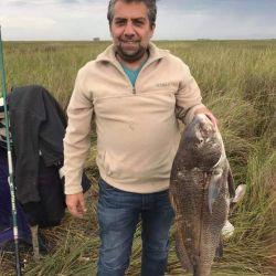En cuanto a la corvina negra, esta semana la pesca se fue alternando entre jornadas muy buenas y otras con prácticamente nula actividad.