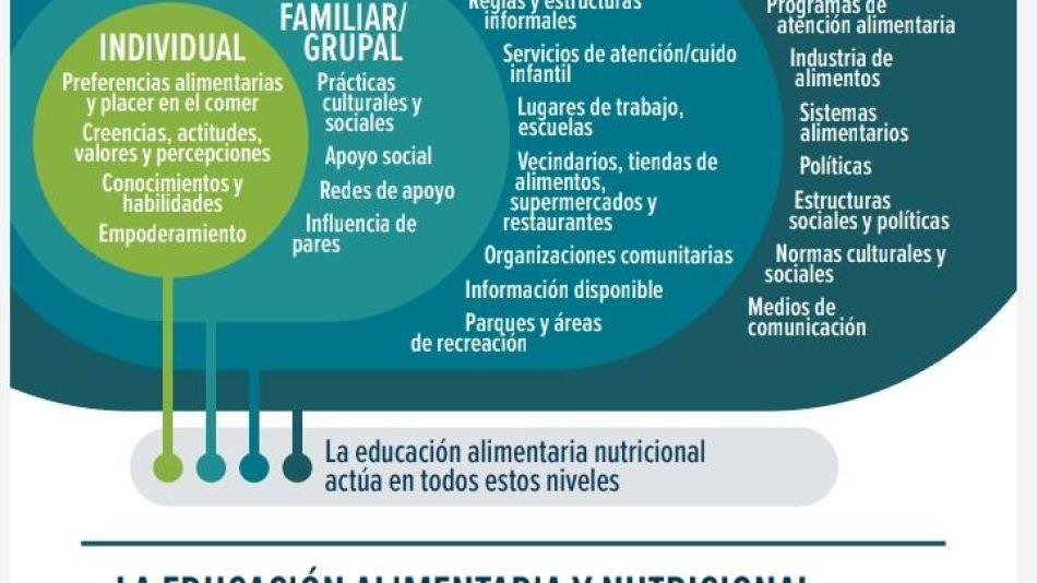Eeducación alimentaria
