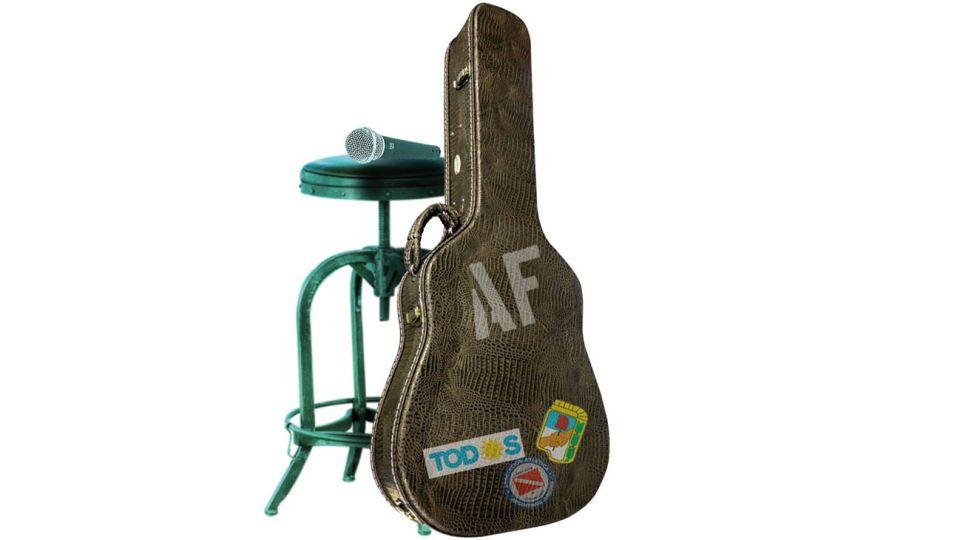 20200501_guitar_case_af_temes_g.jpg