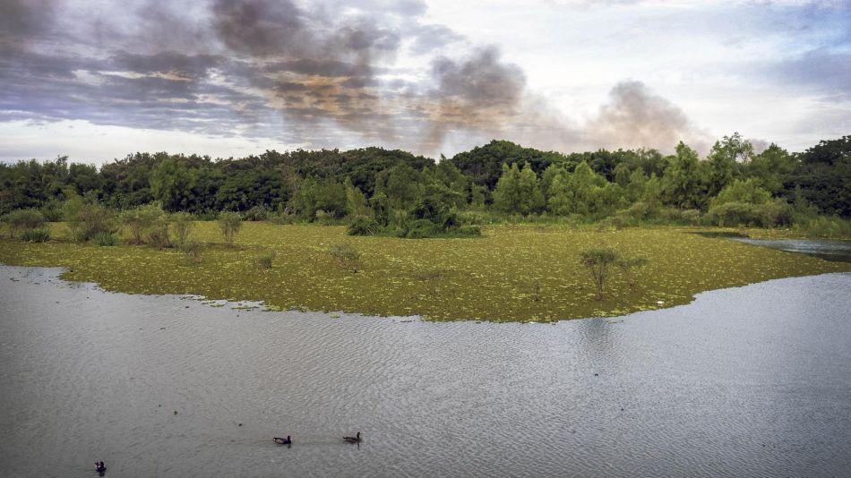 reserva ecológica 20200113