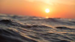 La temperatura de los océanos aumentó.