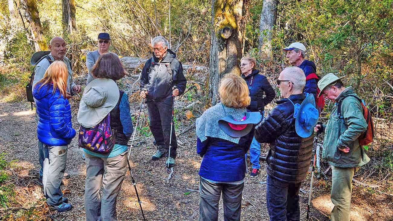 En grupo. La recorrida por los bosques en Villa La Angostura incluye momentos de reflexión colectiva. Van guiados por Juan Aubert. Las técnicas incluyen conectarse con los árboles.