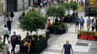 calle florida arbolitos 20200117