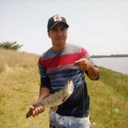 La laguna Las Barrancas está ofreciendo muy buenas tarariras de uno y dos kilos.