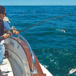 La salida se caracterizó por la fuerte actividad de los peces.
