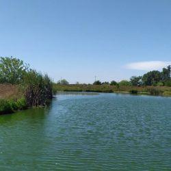 El ámbito está conformado por cuatro lagunas artificiales.
