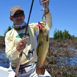 De nada sirve obsesionarse con pescar con mosca en el mar cuando no es zona de peces cazadores o el agua está muy turbia.