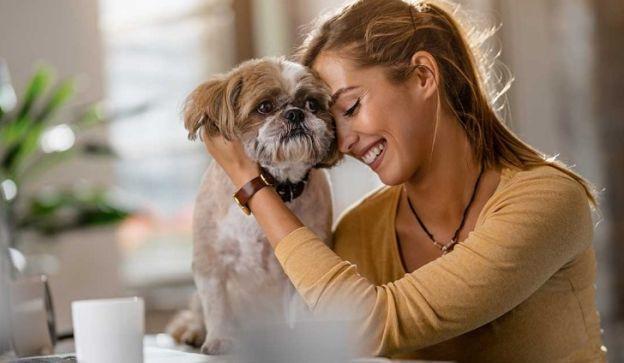 Las mascotas se convierten en protagonistas y terminan siendo los más mimados de la casa.