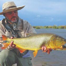 La pesca con mosca se la practica con éxito en la búsqueda de dorados.