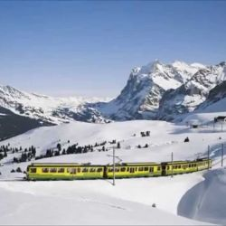 El tren asciende a un ritmo lento para que los pasajeros se vayan aclimatando a la altura.