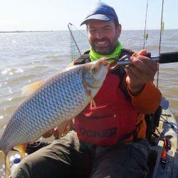 No es sencilla la pesca de boga, es un pez que rara vez se clava solo.