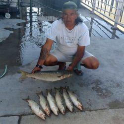 El gran destacado de la última semana es la pesca de lisas en el Pejerrey Club de Quilmes, donde disfrutamos de grandes momentos con esta especie esquiva.