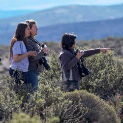 Un safari fotográfico también puede convertirse en una salida de familia.