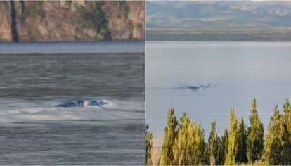 Izquierda. La foto tomada por Reinhold con su celular. Derecha. La imagen captada por Laurencio desde la ventana de su casa, frente al lago Nahuel Huapi.