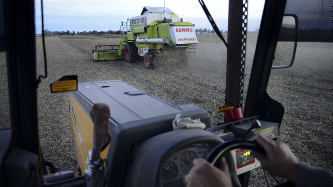 Farmers operate combines during soybean harvest near Salto, Argentina.