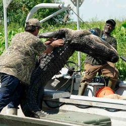 """""""El pantano también es nuestro hogar. Nosotros no cazamos por placer, lo hacemos para mantener un control"""", asegura Troy."""