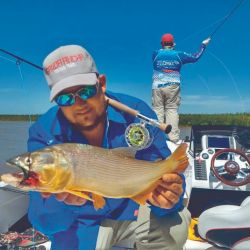 Doradillos pescados desde el agua utilizando equipos de spinning. Los señuelos tipo glidding dieron los mejores resultados.