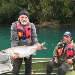 El salmón chinook transita las correntosas aguas del río Puelo para llegar a su fin, el desove.