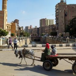 La ciudad de Fayún, en el oasis del mismo nombre, tiene alrededor de 500.000 habitantes. Foto: Simone A. Mayer/dpa.