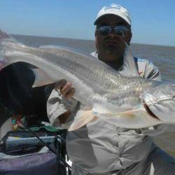 Patíes, otra linda pesca que nos regala el Río de la Plata.