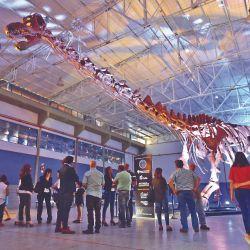 Muestra itinerante del Museo Egidio Feruglio (Trelew), en Puerto Madryn, del dinosaurio herbívoro más grande del mundo, el Patagotitan mayorum.