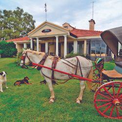 En la estancia Villaverde se pasea en antiguo carruaje francés por la planicie pampeana.