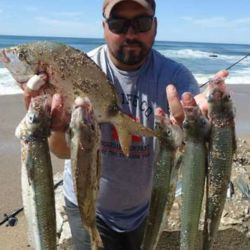 Buena pesca variada en Miramar y Mar del Sud.