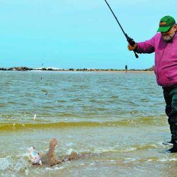 La costa atlántica también está vedada para la pesca durante la cuarentena