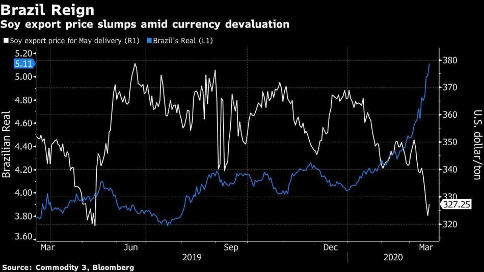 Soy export price slumps amid currency devaluation