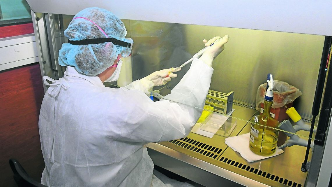 Technicians analyse an average of 200 samples per day. Between 8 and 10 percent are positive.
