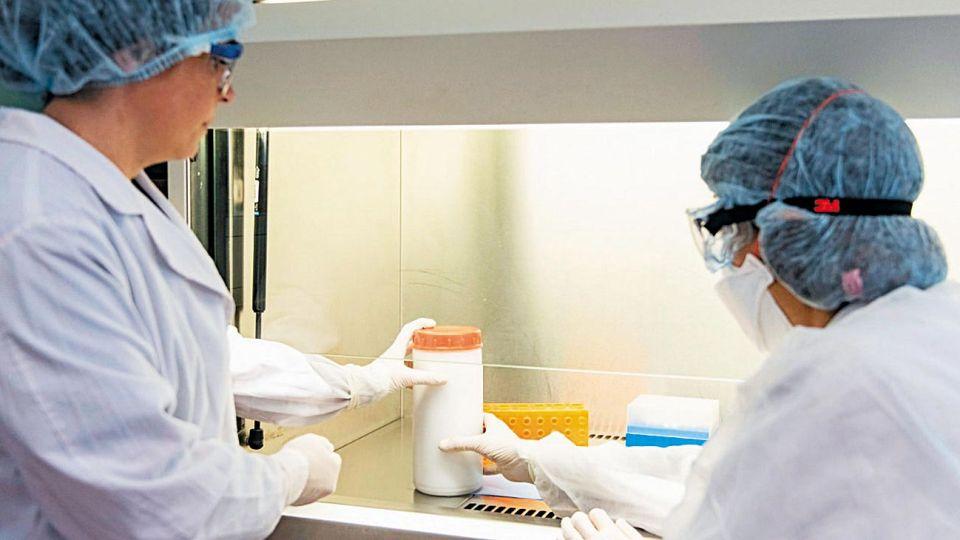 Test. Se utiliza una técnica conocida como PCR. Los resultados tardan entre seis y siete horas.