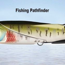 Fishing Pathfinder