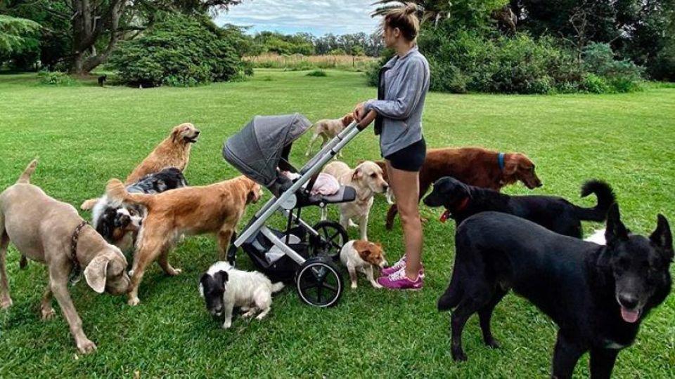 Eugenia Tobal, Ema y sus cachorros