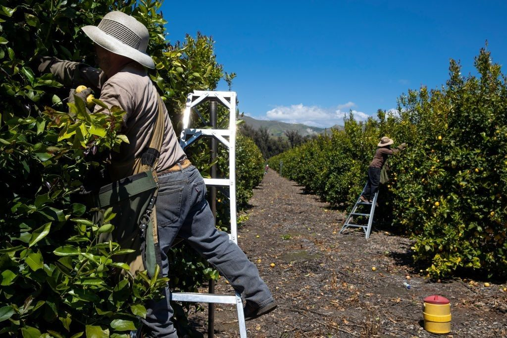 """Essential"" Workers  Keep American Life Going During Coronavirus Pandemic"