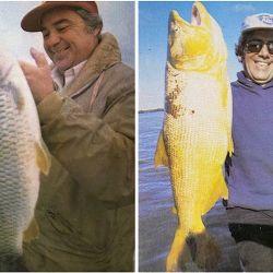 Izq.: bogas de más de 3,5 kg. Der.: otro de los grandes dorados de la nota.