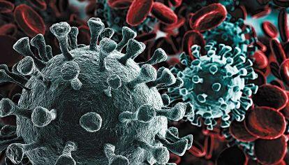 """Virus. Las metáforas bélicas se imponen ante el """"enemigo invisible""""."""