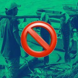 Chaco dio marcha atrás con la resolución de habilitar la pesca comercial de subsistencia.