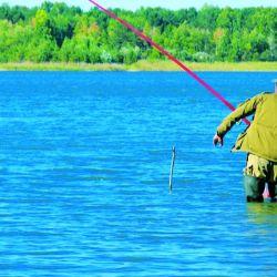 En caso de subsistencia sólo se permite la pesca de costa con caña de un anzuelo.
